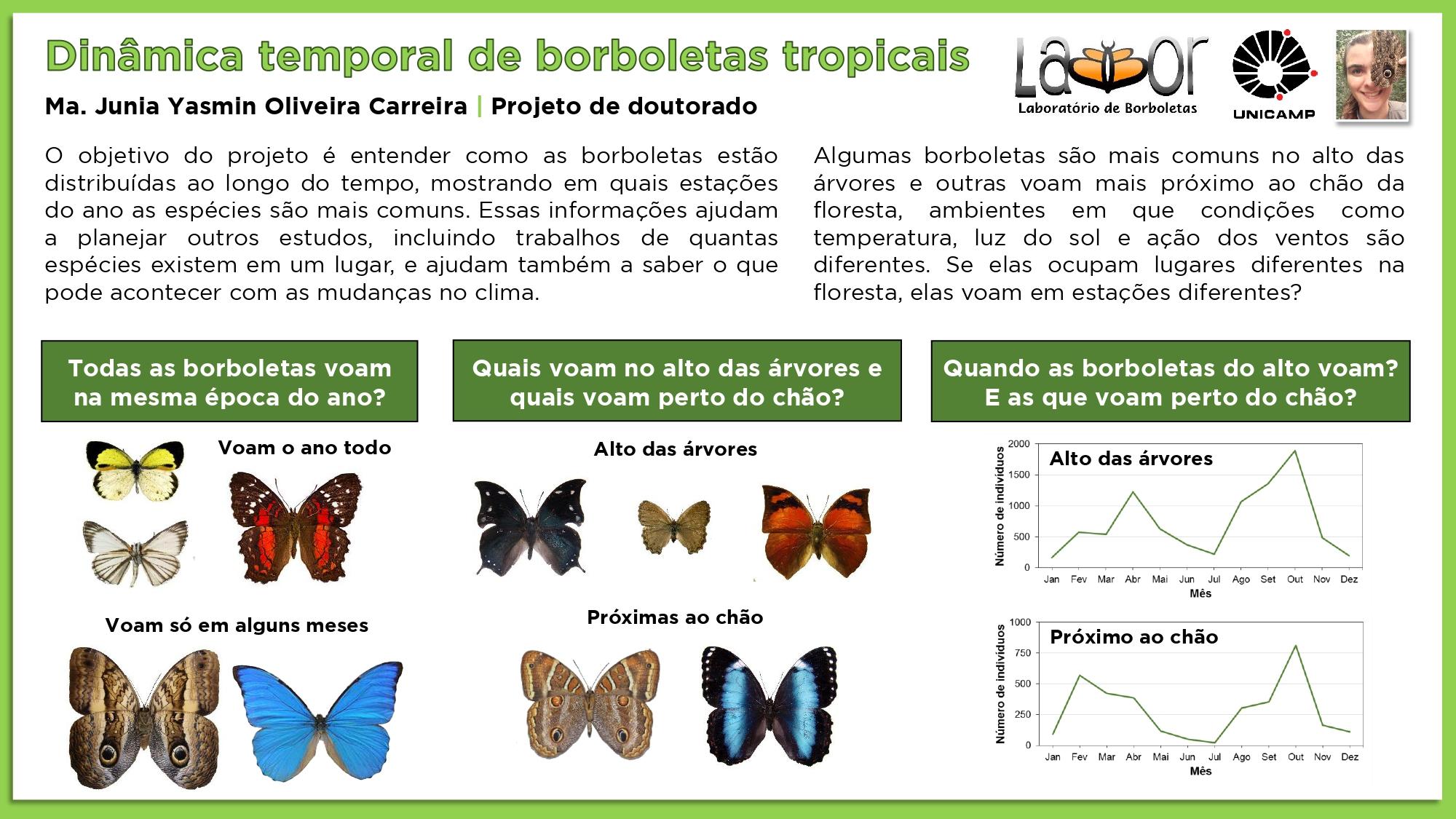 Slides_divulgação_labbor_page-0006