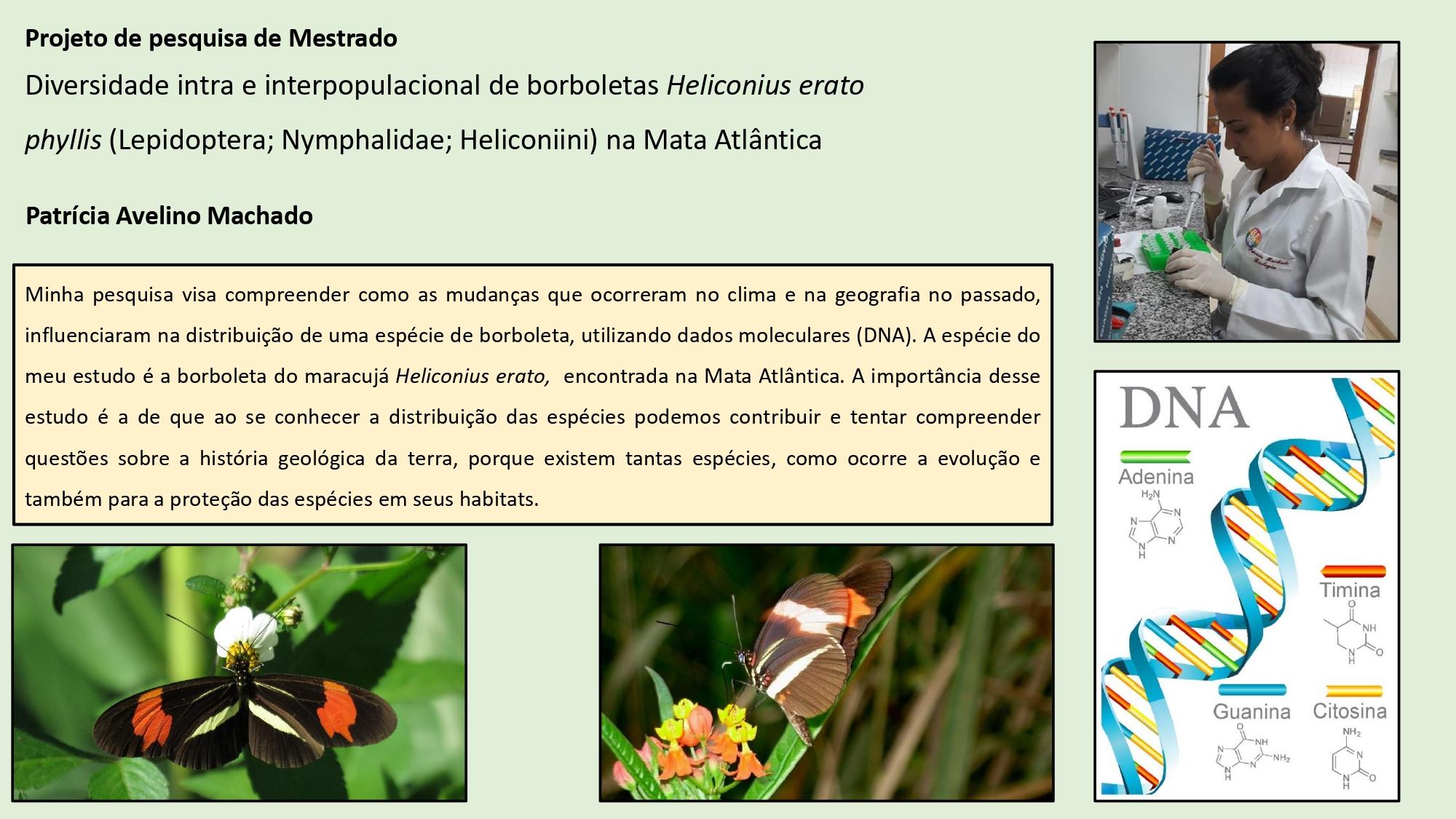 Slides_divulgação_labbor_page-0008